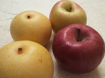 秋の果実.JPG